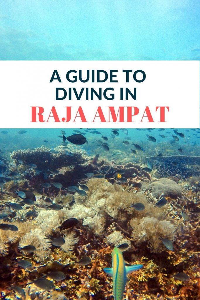 Pin for Dive Raja Ampat