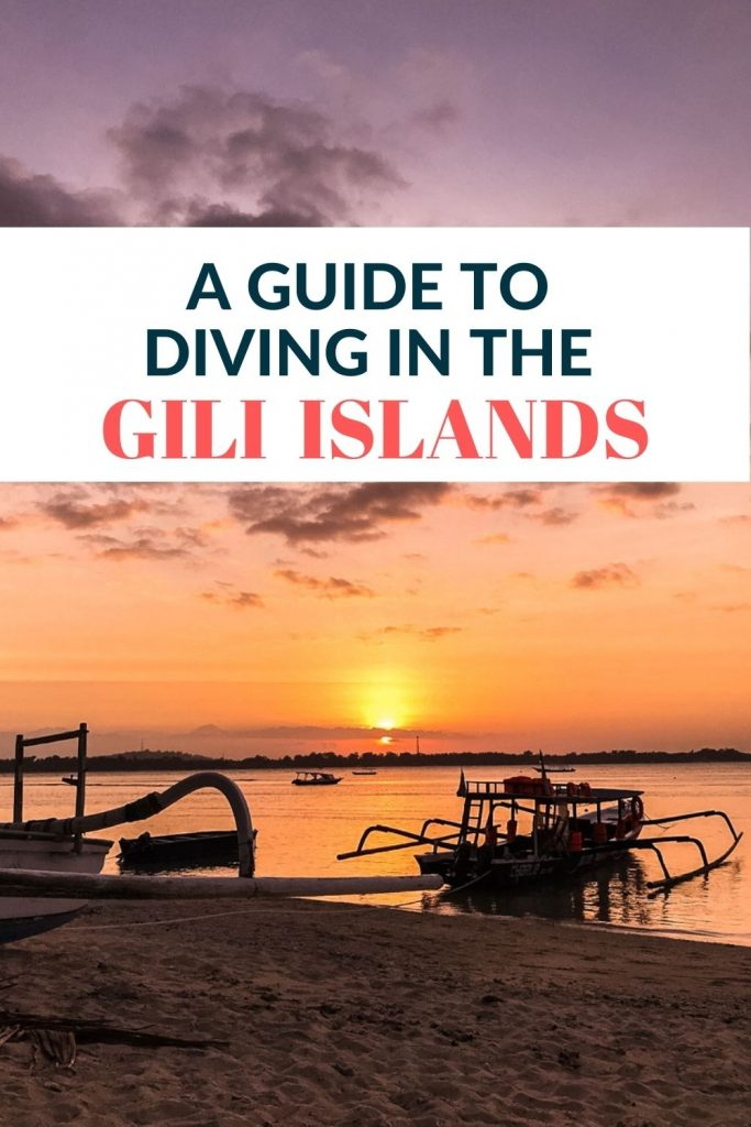 Pin for Diving in Gili Islands