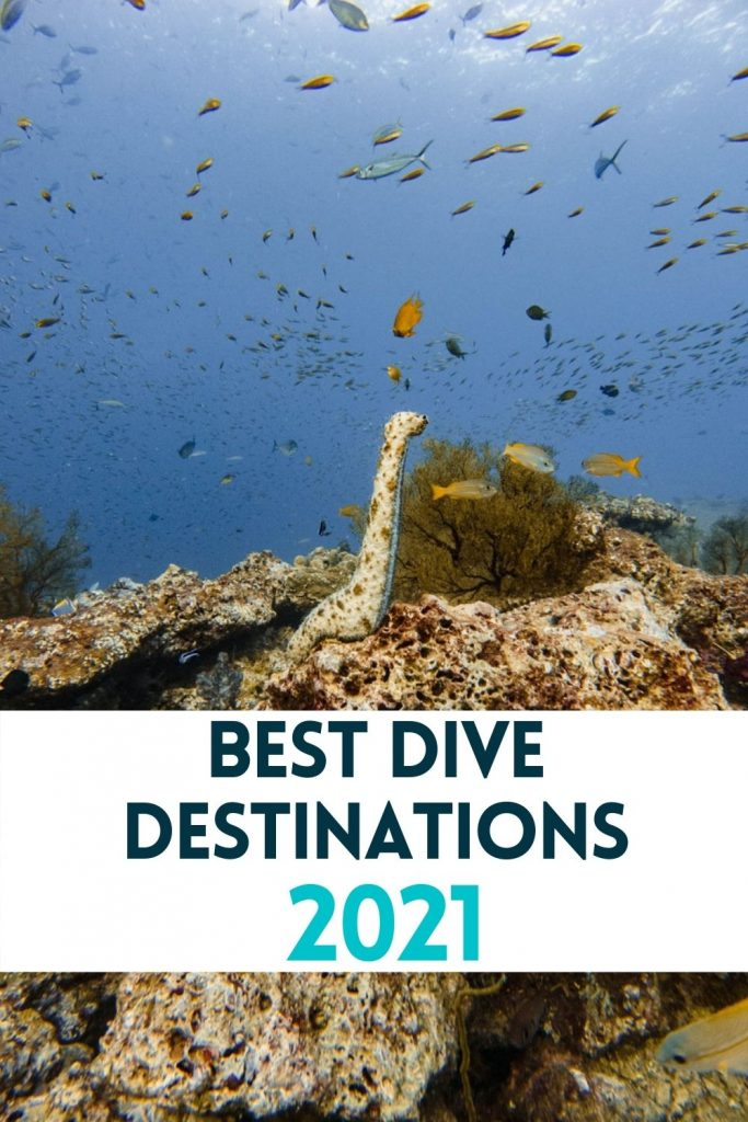 pin for best dive destinations in the world