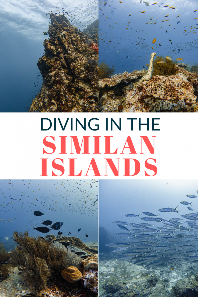 Pin for Diving in the Similan Islands