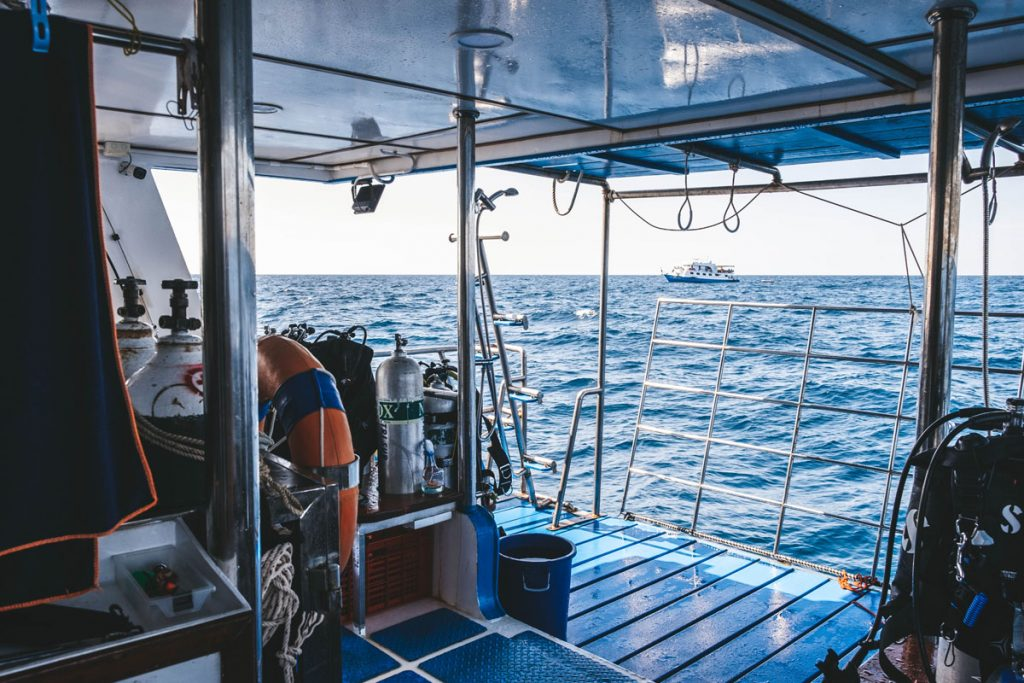 dive deck on smiling seahorse