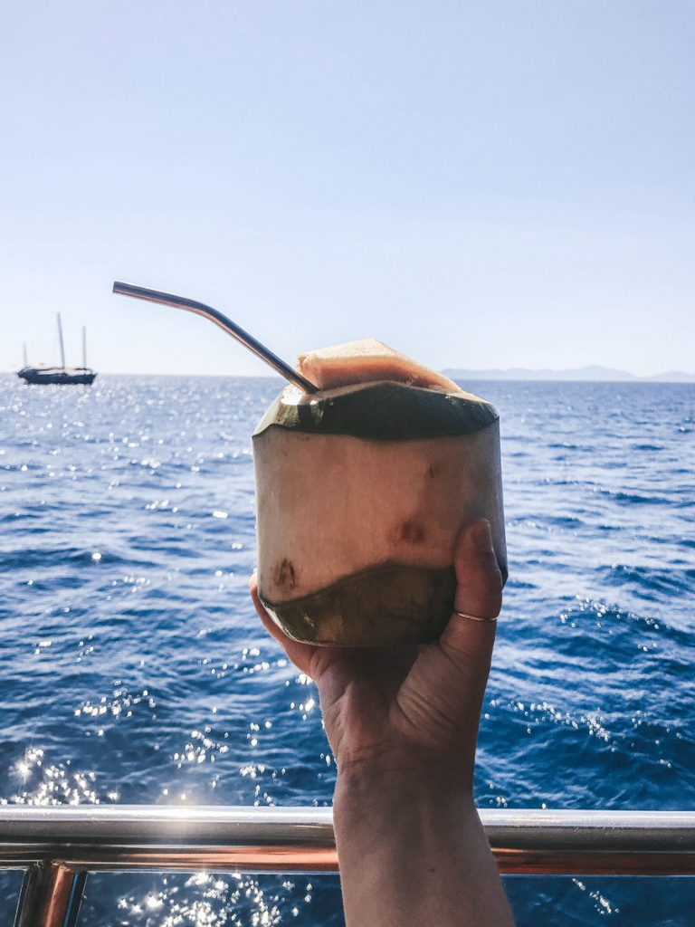 hand holding coconut with straw
