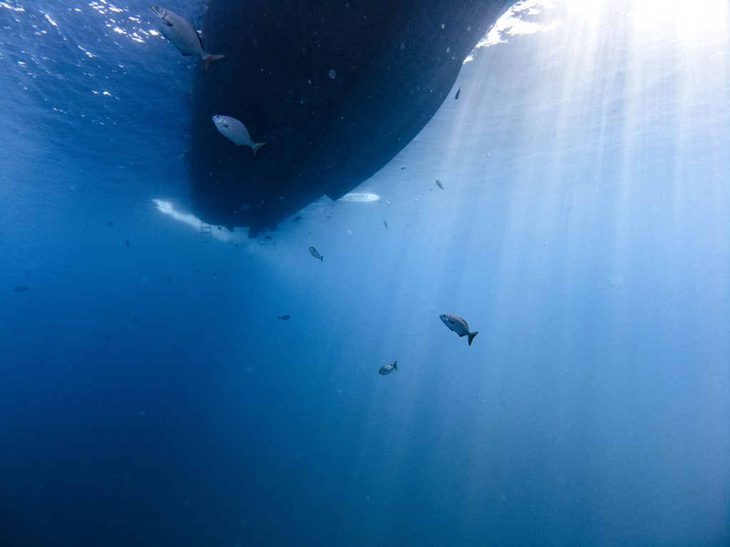 boat from below at tachai pinnacle dive site